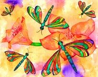 libélulas Fotografía de archivo