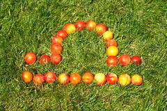 Libra. September 23-October 22,zodiac sign,made of plums on grass,see series Stock Photo