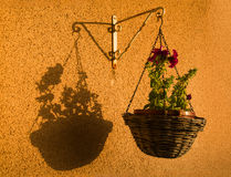 Libra. Basket with flowers and its shadow Royalty Free Stock Photos