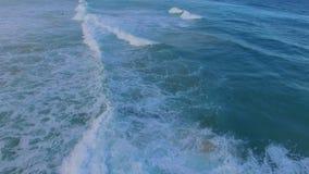 Librandosi sopra l'acqua in spiaggia di Bondi stock footage
