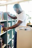 Librarian Arranging Books In Library Royalty Free Stock Image