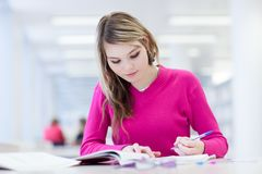In the library Stock Image