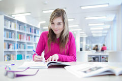 In the library Royalty Free Stock Photos