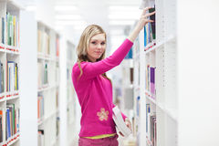 In the library Royalty Free Stock Images