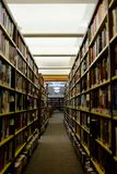 Library Aisle and Book Stacks Royalty Free Stock Photo