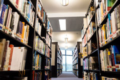 Library book shelf aisles with focus on the far end bright window with greenery Royalty Free Stock Photo