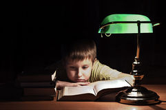 Library boy reads book Stock Image