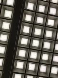 Library ceiling. I really liked the lighting pattern Royalty Free Stock Images
