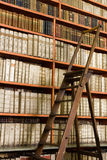 Library full of aged books and ladder Royalty Free Stock Photos