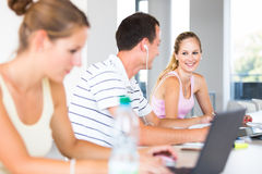 In the library - group of college/university students Royalty Free Stock Images