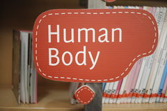 Library human anatomy section. Sign in the library human anatomy section Stock Photo