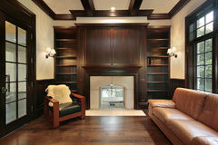 Library with marble fireplace Royalty Free Stock Photo