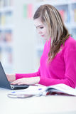 In the library - pretty female student Royalty Free Stock Photo