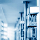 Library shelves and books Royalty Free Stock Image