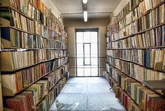 Free Library Storage Room Stock Photography - 36262272
