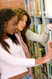 Library students Royalty Free Stock Image
