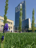 Library of trees, the new Milan park overlooking the Palazzo della Regione Lombardia, skyscraper Stock Images