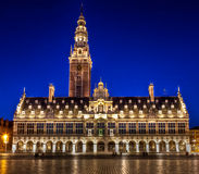 Library of the University of Leuven at night Stock Photography