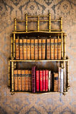 Library vintage. Wall with wallpaper. Royalty Free Stock Image
