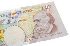Libras inglesas Imagem de Stock Royalty Free