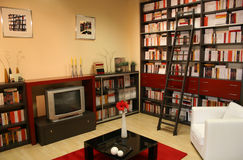 Libreria domestica 2 Immagine Stock Libera da Diritti