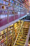 Libreria enorme Immagine Stock Libera da Diritti