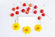 Libreta, flores y cerezas en blanco Foto de archivo