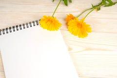 Libreta y flores amarillas en la tabla blanca fotos de archivo libres de regalías