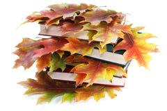 Libri con i fogli di autunno dorati Immagine Stock