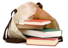 Libri con la borsa di eco Fotografie Stock Libere da Diritti