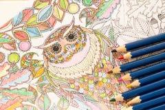 Libri da colorare adulti con le matite, nuova tendenza di alleviamento di sforzo, persona di concetto di consapevolezza che color Immagini Stock Libere da Diritti