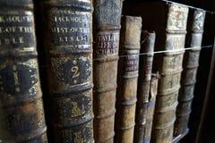 Libri dei libri dei libri Fotografia Stock