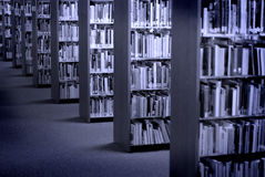 Libri delle biblioteche Immagine Stock