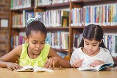 Libri di lettura degli allievi nella biblioteca Fotografia Stock Libera da Diritti