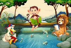 Libri di lettura degli animali selvatici dal fiume illustrazione vettoriale