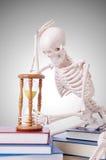 Libri di lettura di scheletro contro la pendenza Immagine Stock Libera da Diritti