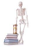 Libri di lettura di scheletro Immagini Stock
