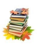 Libri e fogli di autunno su una priorità bassa bianca Fotografia Stock