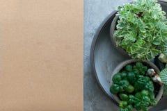 Libri e piante in vaso Fotografia Stock