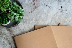 Libri e piante in vaso Immagine Stock Libera da Diritti