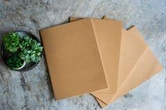 Libri e piante in vaso Immagine Stock
