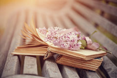 Libri e ramo dimenticati di un lillà su un banco Fotografia Stock Libera da Diritti
