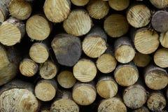 Libri macchina di legno tagliati Fotografia Stock Libera da Diritti