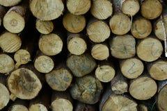 Libri macchina di legno tagliati Immagini Stock Libere da Diritti