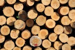 Libri macchina impilati del legname Fotografie Stock