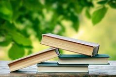 Libri in primavera Immagini Stock