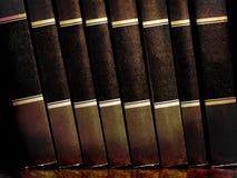 Libri sulla mensola Immagini Stock