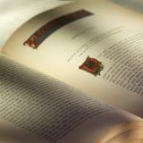 libro Стоковая Фотография RF