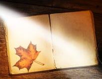 Libro antiguo, libro abierto, educación del concepto, aprendiendo, conocimiento Imágenes de archivo libres de regalías