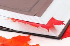 Libro aperto con le foglie di acero Fotografia Stock